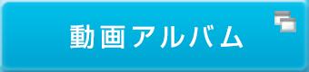 動画アルバム